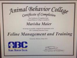Dog Trainer Certification Ottawa